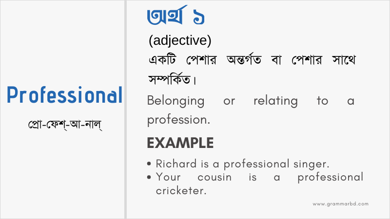 professional-meaning-in-bengali