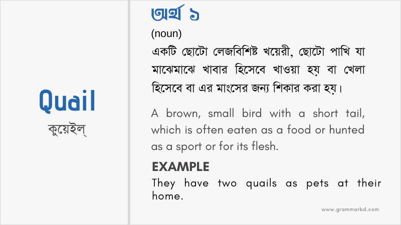 quail-meaning-in-bengali